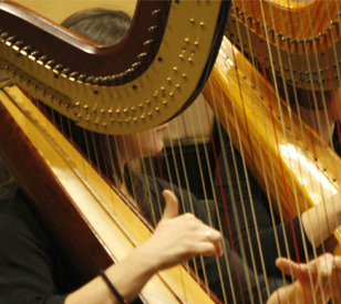 Image for TU Dublin Lecturers Harps of Hope Performance