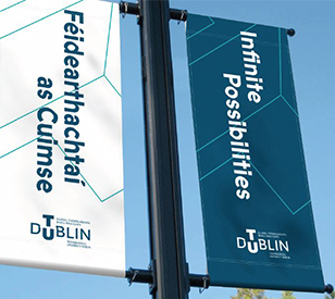 Image for TU Dublin Irish Language Classes and Online Training for 2020